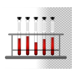 medical test tubes with blood in rack transparent vector image