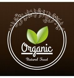 Natural and organic vector image
