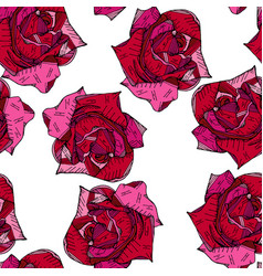 red pink rose floral hand drawn pattern background vector image
