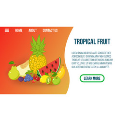 tropical fruit concept banner isometric style vector image
