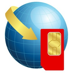 Sim card with globe and arrow vector image vector image