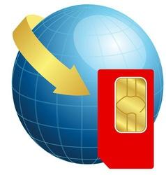 Sim card with globe and arrow vector image