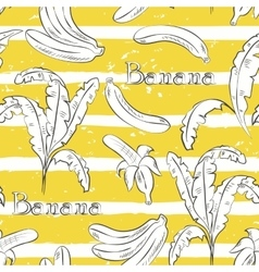 Bananas on yellow stripes vector