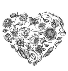 Heart floral design with black and white african vector