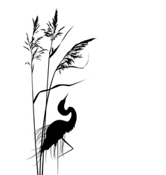 reed and heron vector image