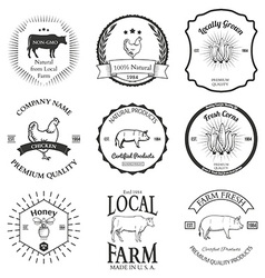 Set of agriculture label design elements vector image