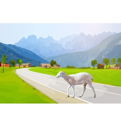 Sheep walking on road in Alps vector
