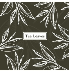 Tea leaves design template vector image