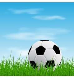ball on grass vector image