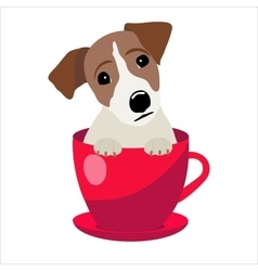 Jack Russell Terrier in red teacup vector image vector image