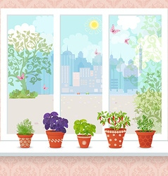 different herbs planted in ceramic pots and fresh vector image vector image