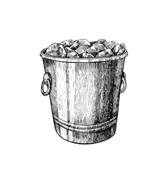 Ice bucket Hand drawn isolated vector image