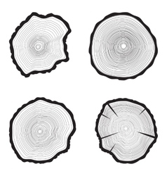 Set Tree rings background Annual tree vector image