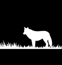 silhouette of wolf in the grass vector image
