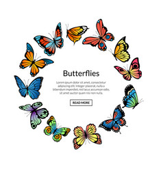decorative butterflies in circle shape with vector image