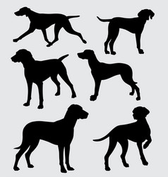 Dog pet animal silhouette vector