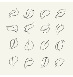Outline sketch leaf set vector image