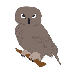 Owl is worth drawing vector