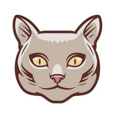 portrait cute cat symbol pet animal logo vector image