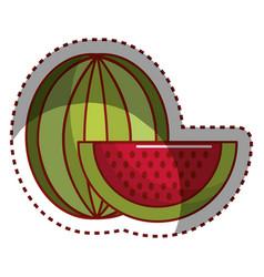 Sticker watermelon fruit icon stock vector