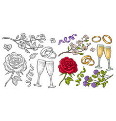 wedding set vintage color engraving vector image