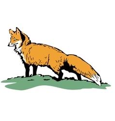 Fox sketch Color hand drawn vector image vector image