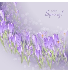 Floral frame with crocuses and snowdrops Purple vector