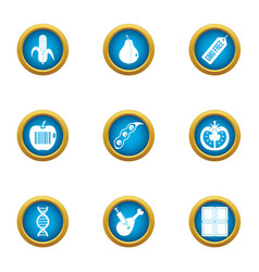 Improve the genome icons set flat style vector