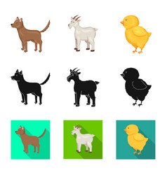 Isolated object breeding and kitchen sign vector