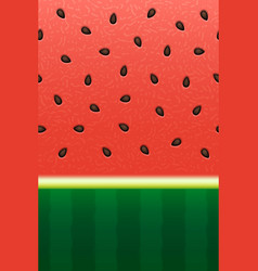 seamless watermelon abstract texture background vector image