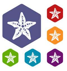 starfish icons set hexagon vector image