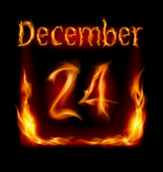 Twenty-fourth december in calendar of fire icon vector