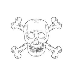 sketch of the skull and bones vector image vector image