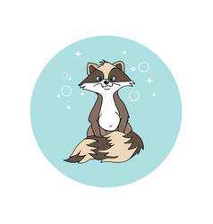 Baby raccoon with a fluffy tail is hungry vector