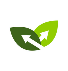 growth leaf business vector image