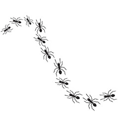 Pack of Ants vector