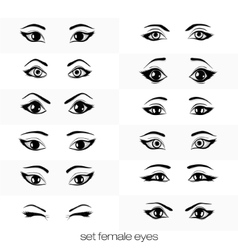 Set of views of a female eye vector