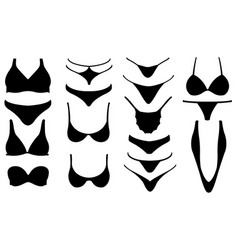 set of different bikini pieces vector image vector image