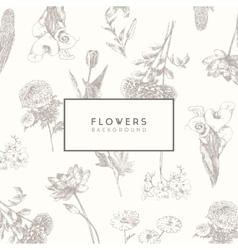 Trendy collection hand drawn flowers floral set vector image