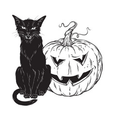 Black cat sitting with halloween pumpkin isolated vector