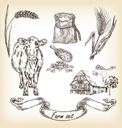 Farm set cow and farm house vector