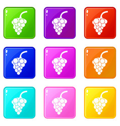 Grape branch set 9 vector