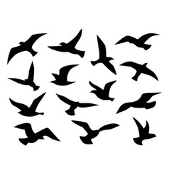 bird silhouettes flying birds flock black vector image