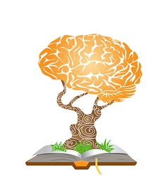 brain tree on book vector image