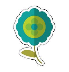 Cartoon aster natural flower vector