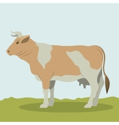 Colorful cow animal design vector
