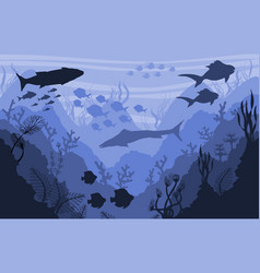 coral reef and underwater wildlife sea background vector image