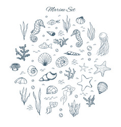 Hand drawn marine set with seahorses shells vector