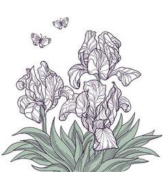 vintage floral card hand drawn vector image