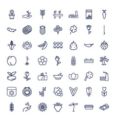 49 plant icons vector